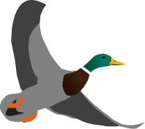 Wild Duck Games logo